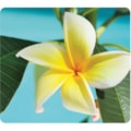 Fellowes Recycled Optical Mouse Pad - Yellow Flower