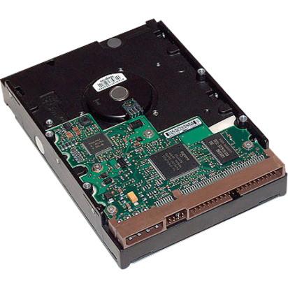 """HP 1 TB Hard Drive - 3.5"""" Internal - SATA (SATA/600)"""