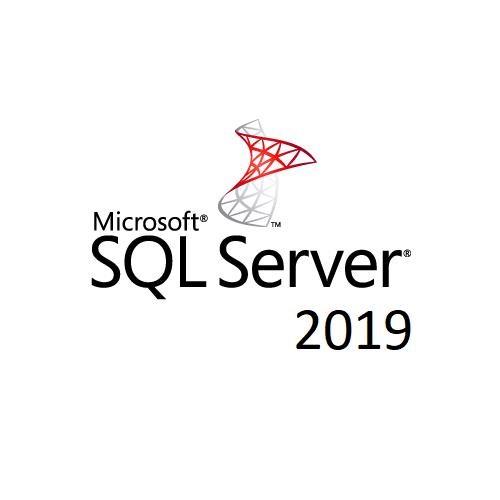 Microsoft SQL Server 2019 Standard - License - 1 License