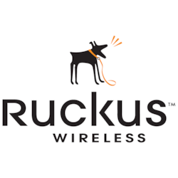 Ruckus Virtual SmartCell Gateway - License - 1000 Access Points