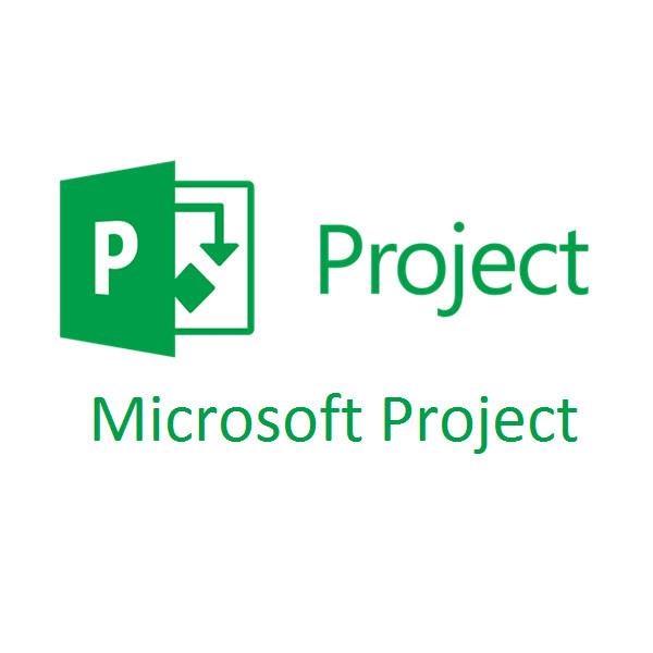 Microsoft Project Plan 1